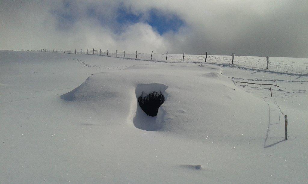 Sous la Banne d'Ordanche, caché par la neige notre TRA offre un abri sûr ! (massif du Sancy - Auvergne)